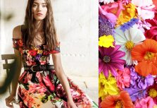 Trendy stylish images. Spring - Summer